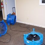 water removal services