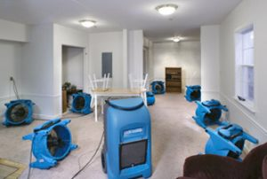 humidification service